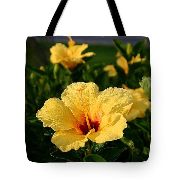 Tropical Yellow Hibiscus Maui Hawaii Tote Bag