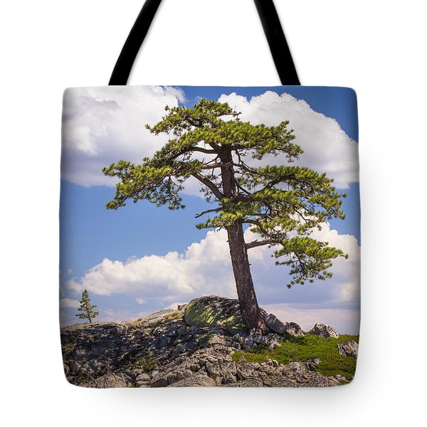 Tote Bag featuring the photograph Truckee  by Vincent Bonafede