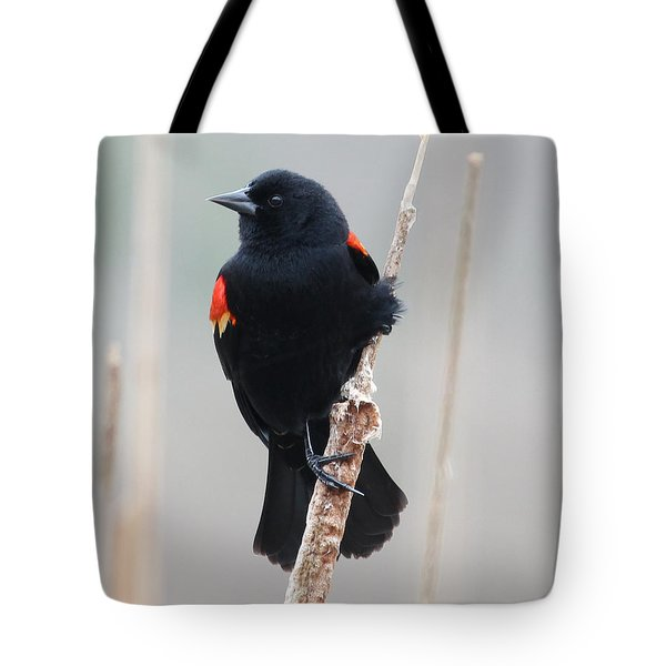 True Beauty Tote Bag by Anita Oakley