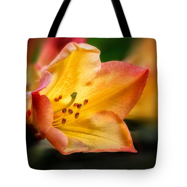 Trumpet Of Spring Tote Bag by Mary Jo Allen