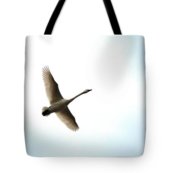 Trumpeter Swan In Flight Tote Bag