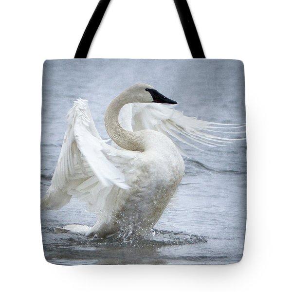 Trumpeter Swan - Misty Display 2 Tote Bag