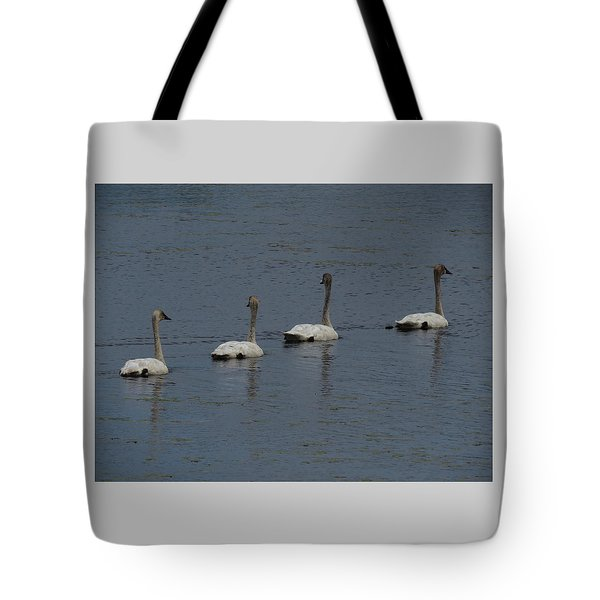 Tote Bag featuring the photograph Trumpeter Swans by Sandra LaFaut