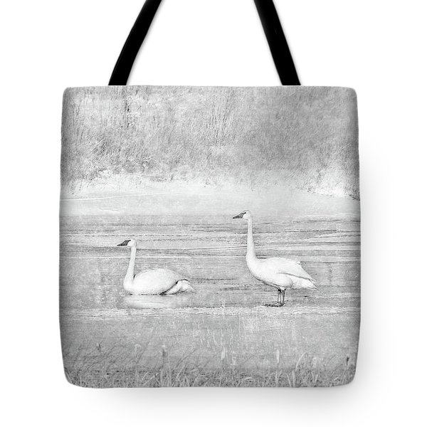 Tote Bag featuring the photograph Trumpeter Swan's Winter Rest Gray by Jennie Marie Schell