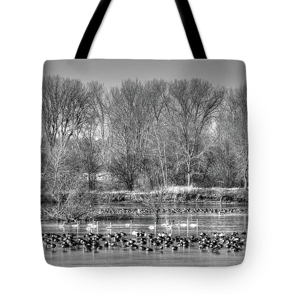 Trumpeters And Canadians In Iowa Tote Bag