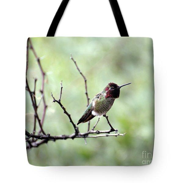 Trumpeting Hummingbird Tote Bag