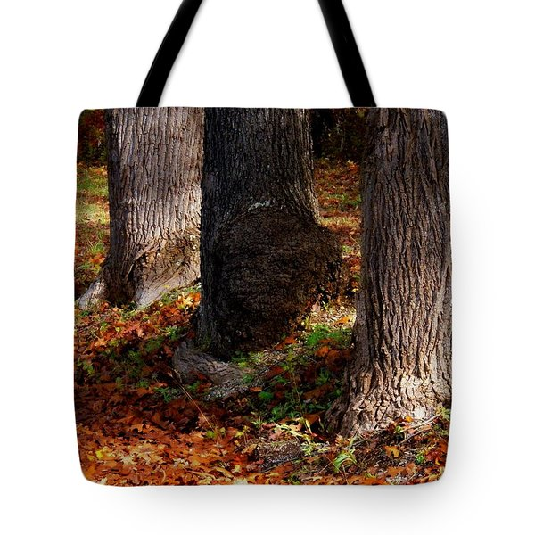Trunk And Leaves Tote Bag by Joyce Kimble Smith