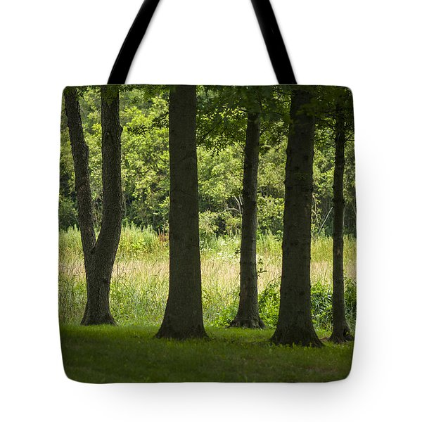 Trunks In A Row Tote Bag