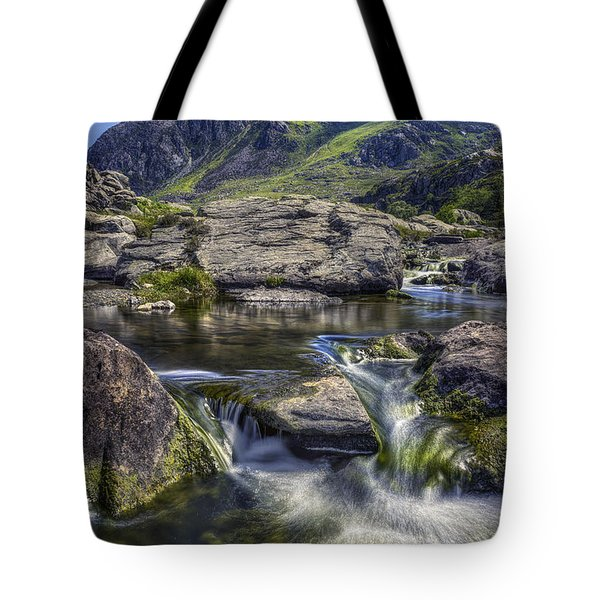 Tryfans Treasures Tote Bag by Ian Mitchell