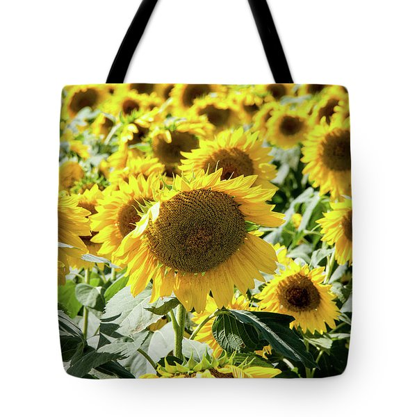 Tote Bag featuring the photograph Trying To Feel Unique by Greg Fortier