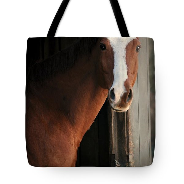 Tote Bag featuring the photograph T's Window by Angela Rath
