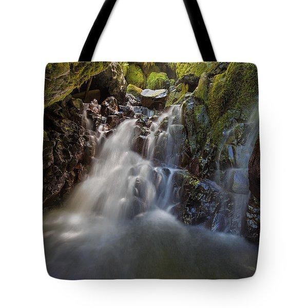 Tucked Away In Gorton Creek Tote Bag by David Gn