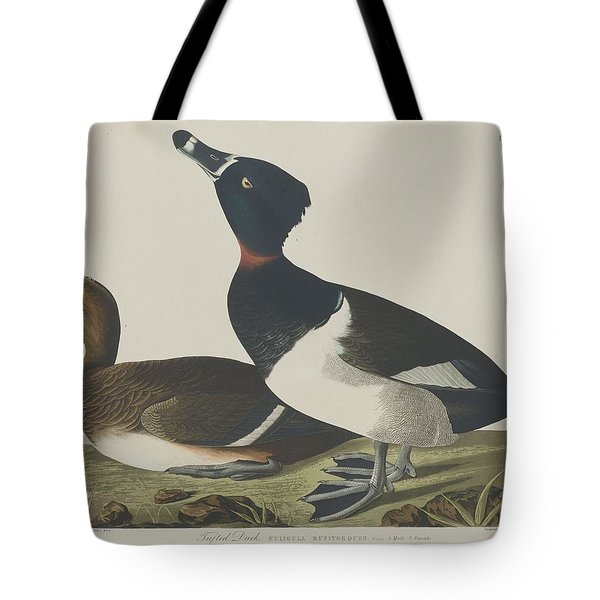Tufted Duck Tote Bag