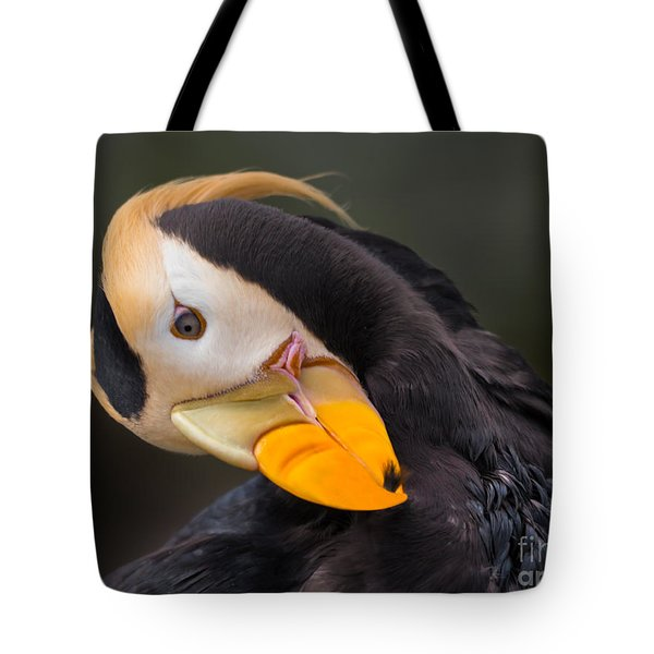 Tufted Puffin Preening Tote Bag