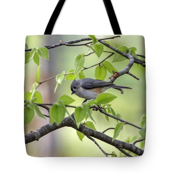 Tote Bag featuring the photograph Tufted Titmouse by Betty Pauwels