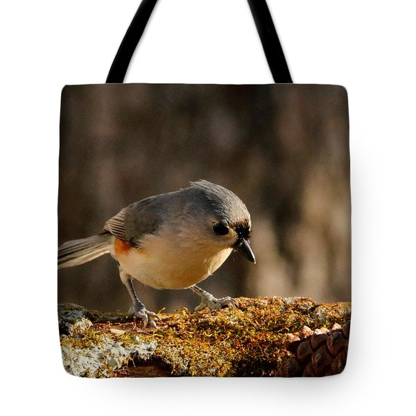 Tufted Titmouse In Fall Tote Bag by Sheila Brown