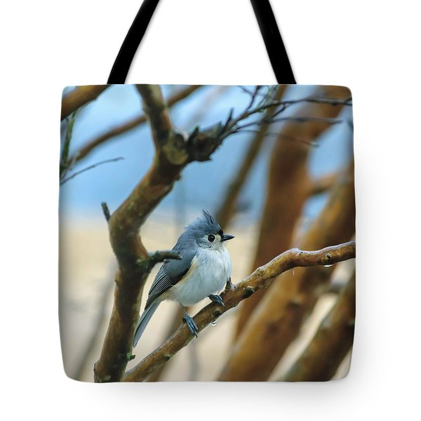 Tufted Titmouse In Tree Tote Bag