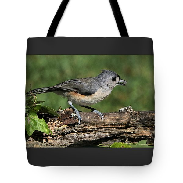 Tufted Titmouse On Tree Branch Tote Bag