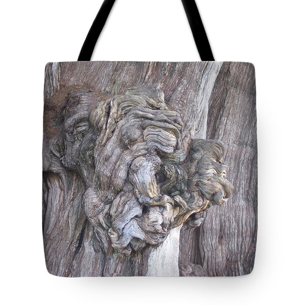 Tule Tree Spirit Tote Bag by Michael Peychich