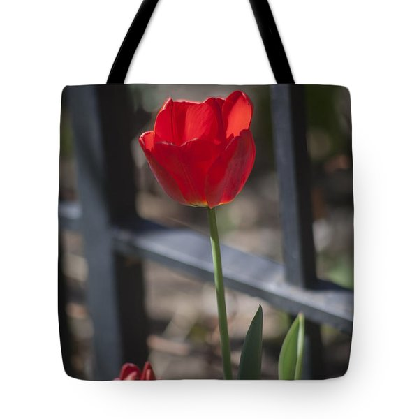 Tulip And Garden Fence Tote Bag
