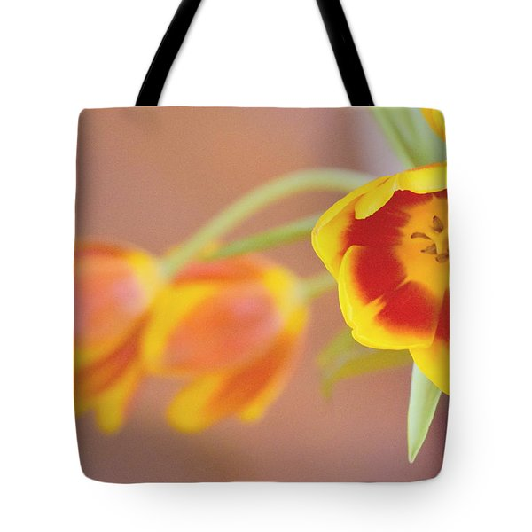 Tote Bag featuring the photograph Tulip Beauty by Deborah  Crew-Johnson