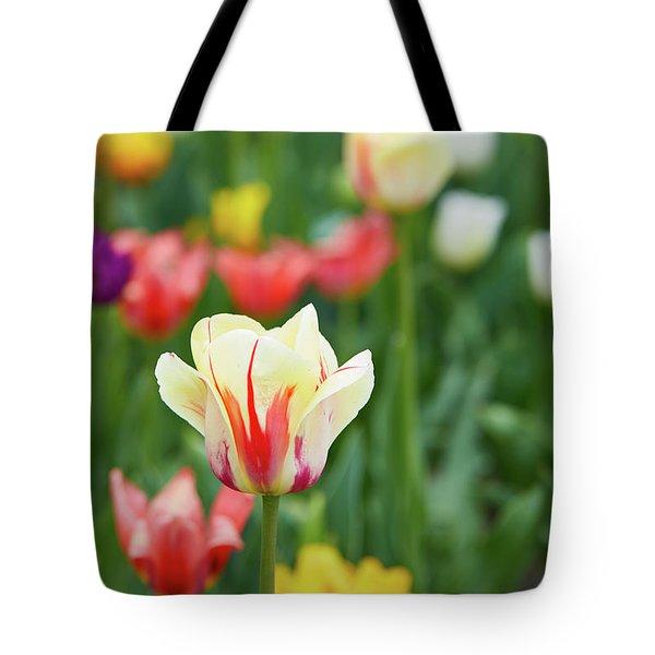 Tulip Bed Tote Bag