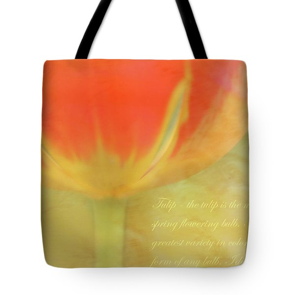 Tulip Tote Bag by Catherine Alfidi