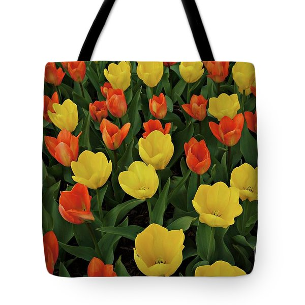 Tote Bag featuring the photograph Tulip Chorus by Patricia Strand