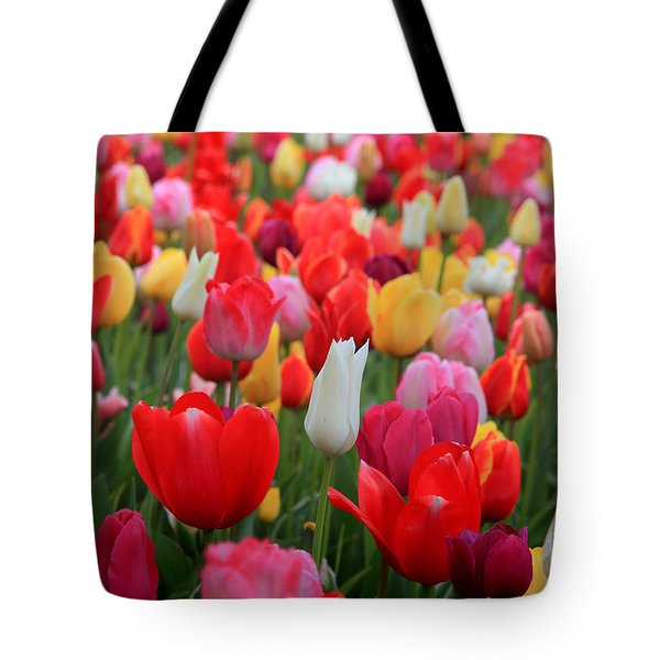 Tulip Color Mix Tote Bag