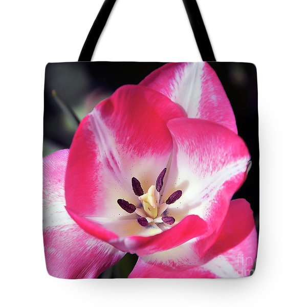 Tote Bag featuring the photograph Tulip by Elvira Ladocki