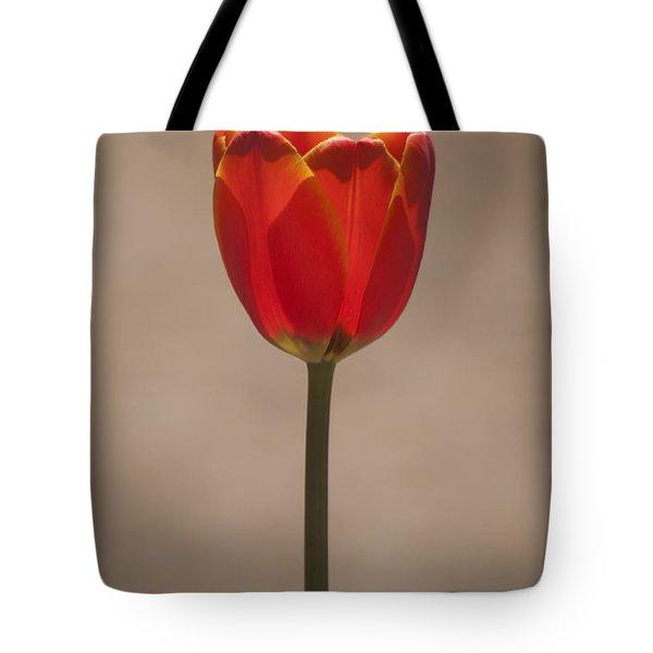 Tulip En Fuego Tote Bag by Morris  McClung