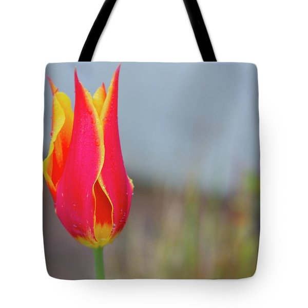 Tulip Fire Tote Bag