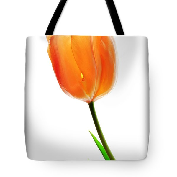 Tulip Flower Tote Bag by Charline Xia