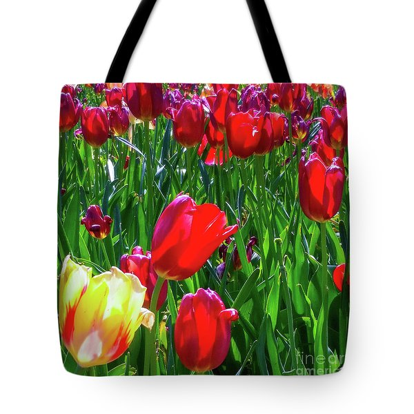 Tulip Garden In Bloom Tote Bag