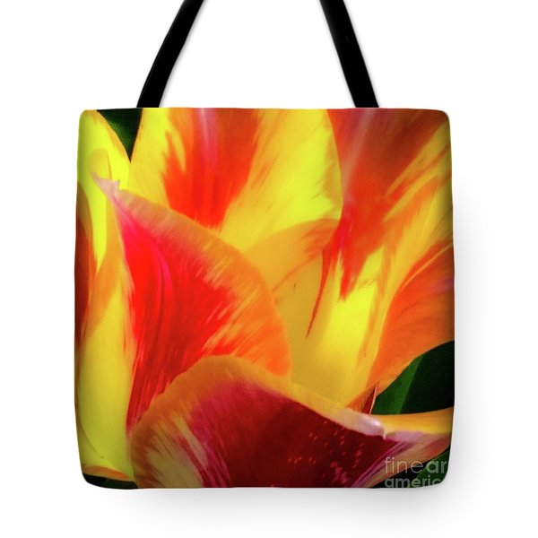 Tulip In Bloom Tote Bag