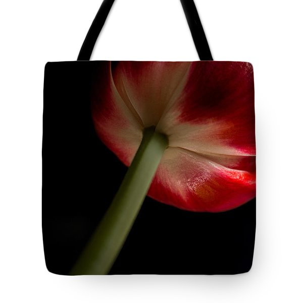 Tulip In Window Light Tote Bag