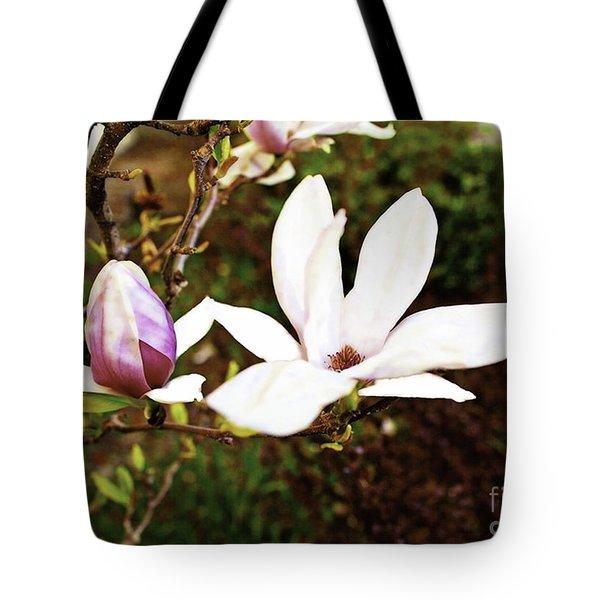 Tulip Magnolia Tote Bag by Nancy Marie Ricketts
