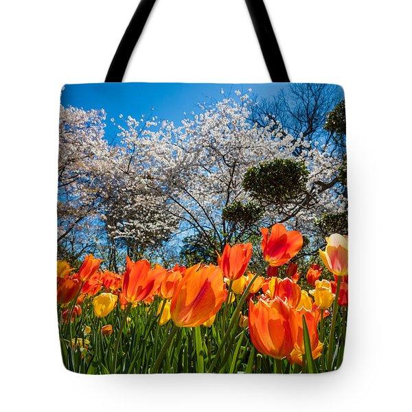 Tulip Panorama Tote Bag