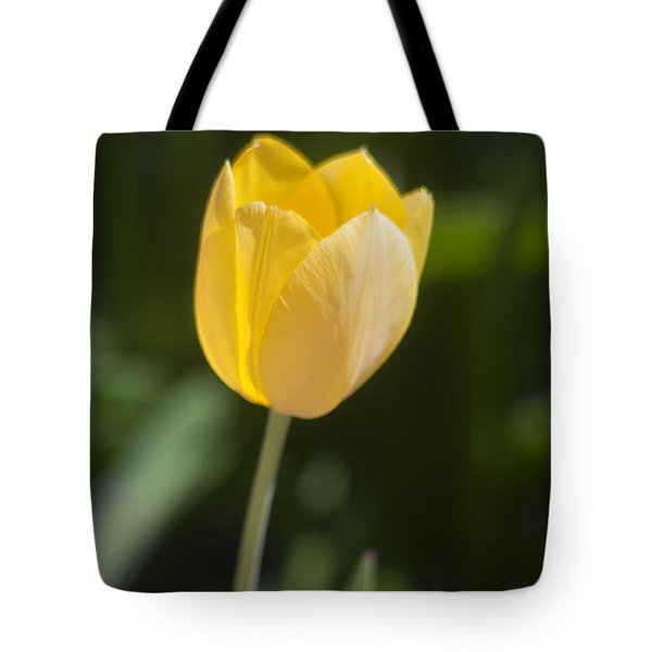Tulip Portrait Tote Bag