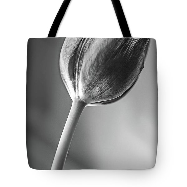 Tulip Shadow And Light Tote Bag by Marius Sipa