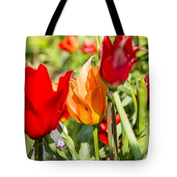 Tote Bag featuring the photograph Tulip - The Orange One 02 by Arik Baltinester