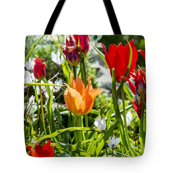 Tote Bag featuring the photograph Tulip - The Orange One by Arik Baltinester
