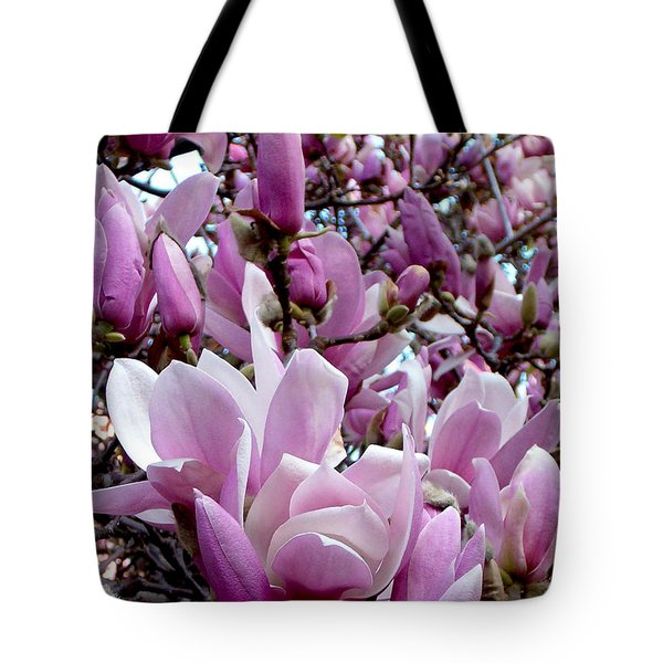 Tulip Tree Tote Bag by Mark Barclay