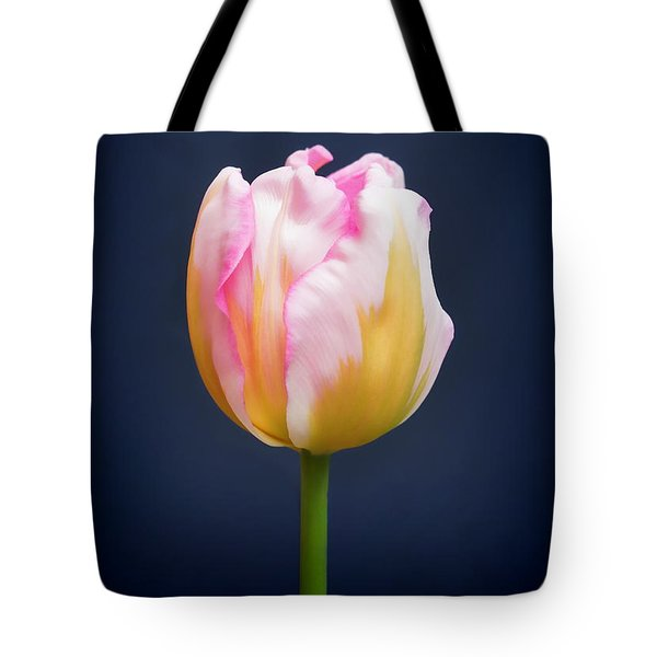 Tote Bag featuring the photograph Tulip Triumph - 2 by Paul Gulliver