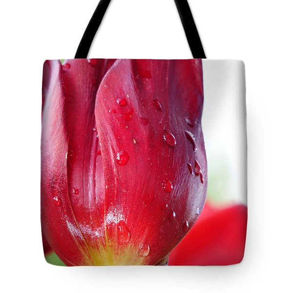 Tulip With Dew Tote Bag