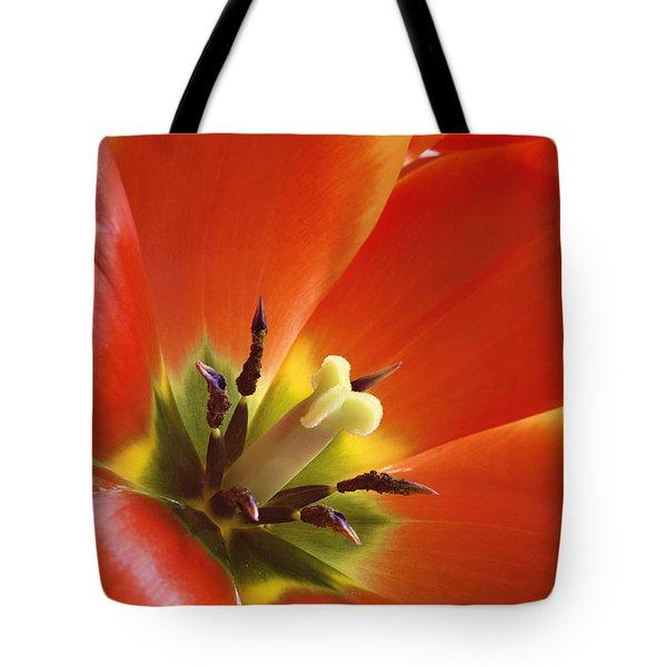 Tuliplicious Tote Bag