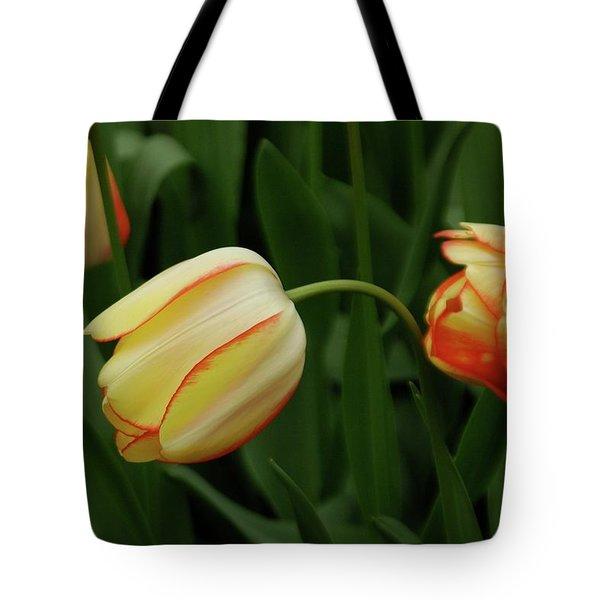 Nodding Tulips Tote Bag