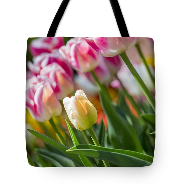 Tote Bag featuring the photograph Tulips by Angela DeFrias