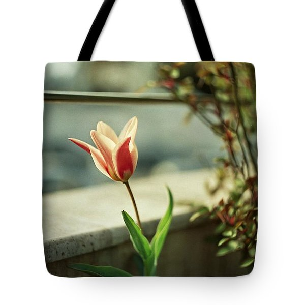 Tulips Are Amazing  Tote Bag
