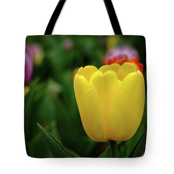 Tulips At Campus Tote Bag